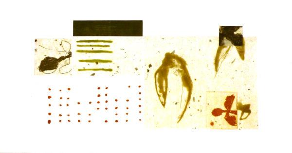 ceuppens-lapin-perdu-gravure