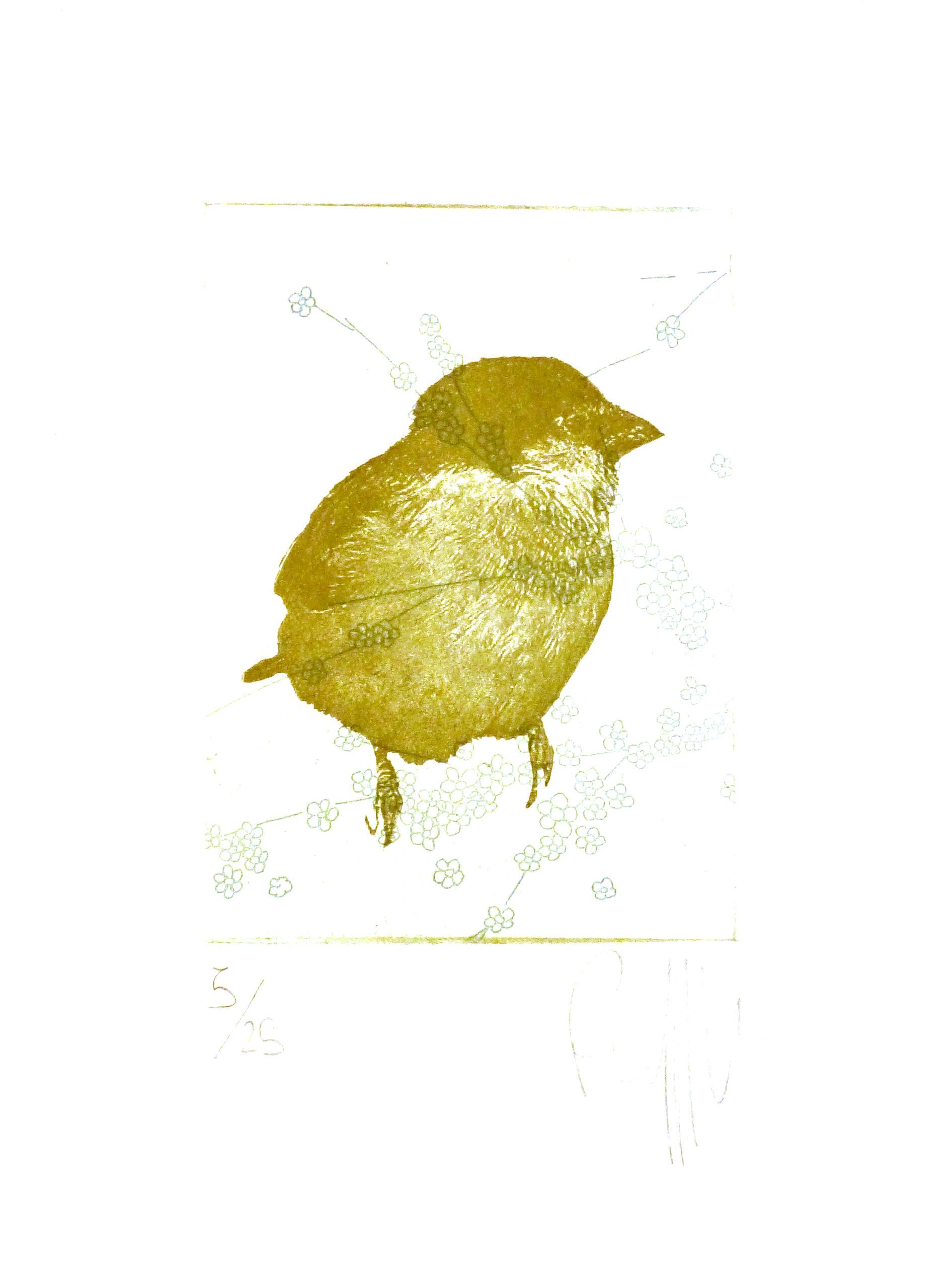 ceuppens-walking-bird-gravure