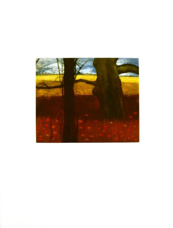 gravure-landscape-kurt-mair-5